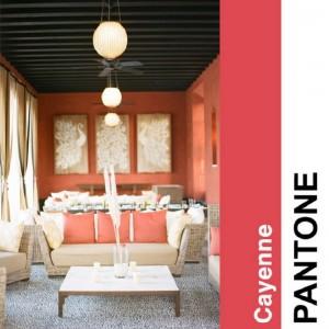 Cayenne Cayenne 300x300