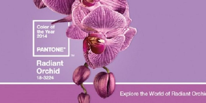 PANTONE COLOR OF THE YEAR 2014: Radiant Orchid Pantone color of the year 2014 Radiant Orchid Official 2014 Pantone e1386247351975 715x357