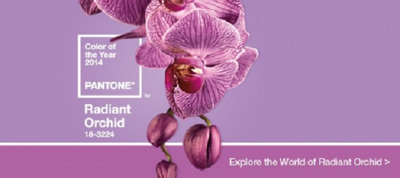 Pantone-color-of-the-year-2014-Radiant-Orchid-Official-2014-Pantone-e1386247351975