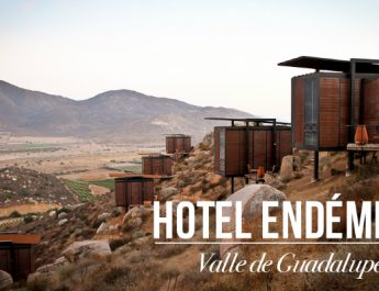 hotel_endemico cover