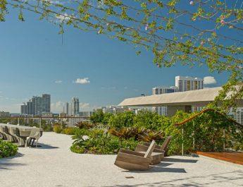 sky garden feature image